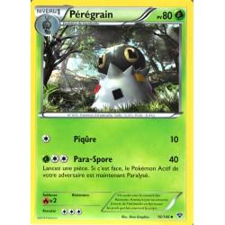 carte Pokémon 16/146 Pérégrain 80 PV XY NEUF FR