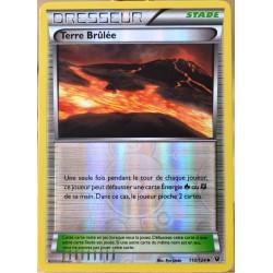 carte Pokémon 110/124 Terre Brûlée REVERSE XY - Impact des Destins NEUF FR