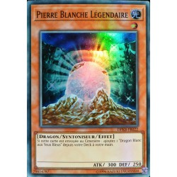 carte YU-GI-OH DPKB-FR022 Pierre Blanche Légendaire NEUF FR