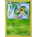 carte Pokémon 5/124 Vipélierre 60 PV XY - Impact des Destins NEUF FR