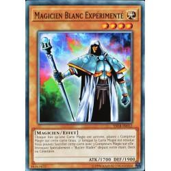 carte YU-GI-OH YSYR-FR012 Magicien Blanc Expérimenté (Skilled White Magician) -Commune NEUF FR