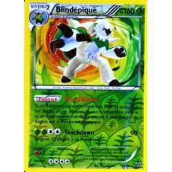 carte Pokémon 14/146 Blindépique 160 PV XY NEUF FR