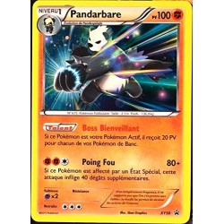 carte Pokémon XY50 Pandarbare 100 PV HOLO Promo NEUF FR